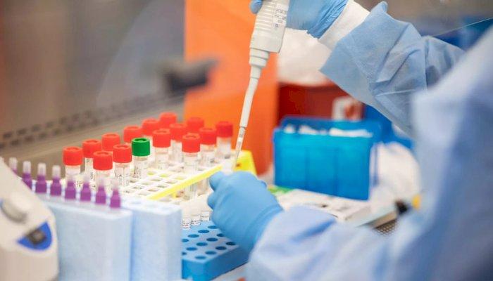 Primul pas către tratament: o fost creat un anticorp pentru neutralizarea Covid-19